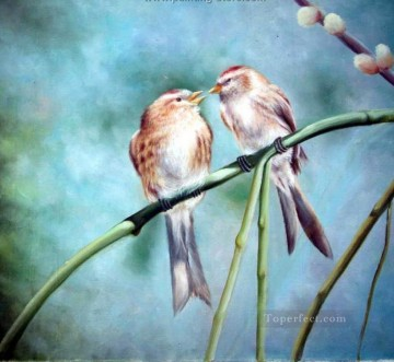 Bird Painting - am225D animal bird