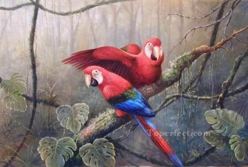 dw073bD animal bird Oil Paintings