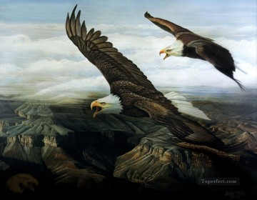 Eagles Echo birds Oil Paintings