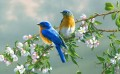 bluebirds with flowers birds