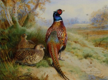 cock and hen pheasant at the edge of a wood 1926 birds Oil Paintings