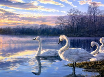 Bird Painting - swan lake sunset landscape birds