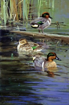 swimming birds Oil Paintings
