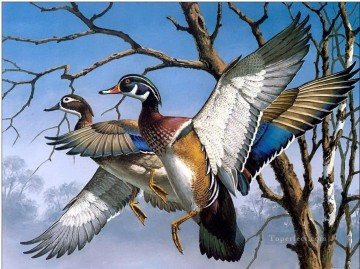 ama0010D13 animal birds Oil Paintings