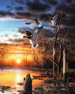 Bird Painting - Anas platyrhynchos in sunset scenes birds
