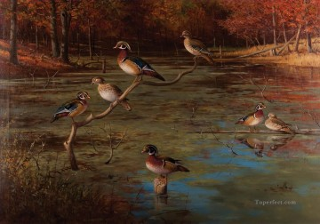 Gromme Wood Ducks birds Oil Paintings