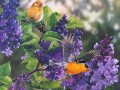 birds and purple flowers