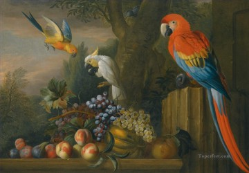 Rape Art - parrots eating grapes birds
