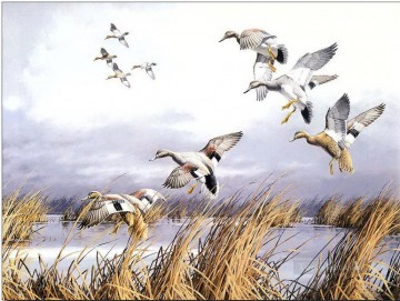 birds flying on lake Oil Paintings