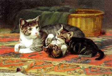 am069D11 animal cat Oil Paintings
