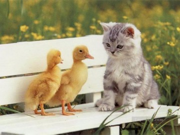 Cat Painting - cat and ducks