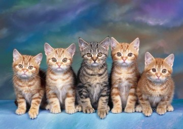 Cat Painting - a line of cats