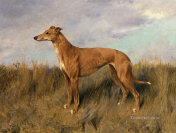 Dog Painting - Henrietta Horn A Greyhound animal Arthur Wardle dog