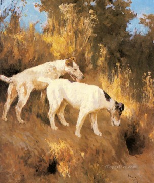 Dog Painting - Terriers On The Scent animal Arthur Wardle dog
