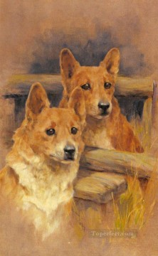 Two Corgies animal Arthur Wardle dog Oil Paintings