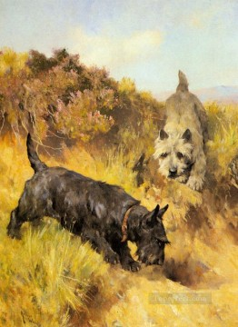 Animal Painting - Two Scotties In A Landscape animal Arthur Wardle dog