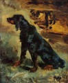 dun a gordon setter belonging to comte alphonse 1881 Toulouse Lautrec Henri de puppy
