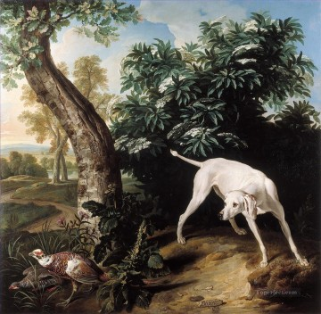 dog Desportes Chienne Blanche Oil Paintings