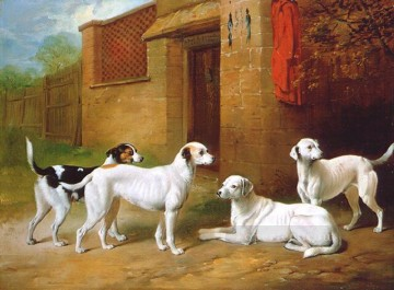 am045D11 animal dog Oil Paintings