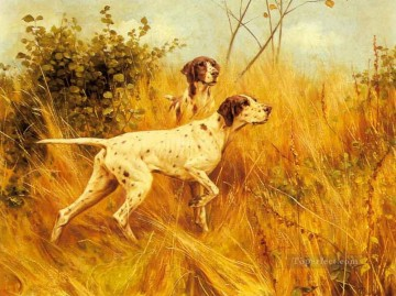 Dog Painting - am194D13 animal dogs