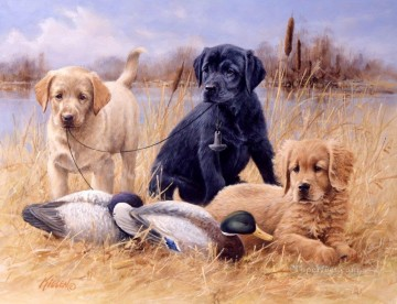 Dog Painting - am279D13 animal dogs