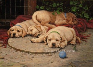 ami0007D13 animal dogs Oil Paintings