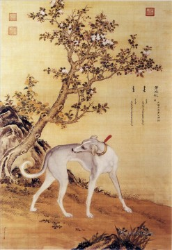 Animal Painting - Cangshuiqiu a Chinese greyhound from Ten Prized Dogs Album Lang shining Giuseppe Castiglione dog