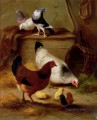 Pigeons And Chickens farm animals Edgar Hunt
