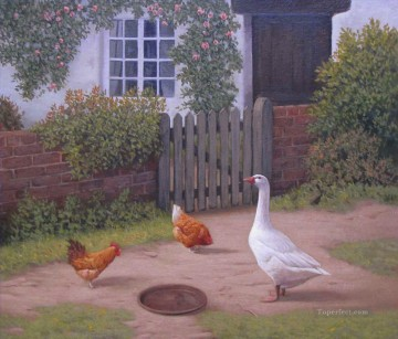 Animal Painting - am160D11 animal fowls