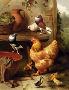 1870 Canvas - Hunt Edgar 1870 1955 A Chicken Doves Pigeons And Ducklings