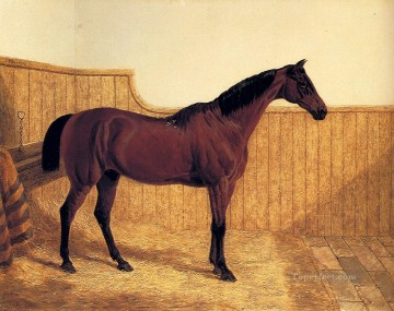 Animal Painting - A Bay Hunter In A Loose Box Herring Snr John Frederick racehorse