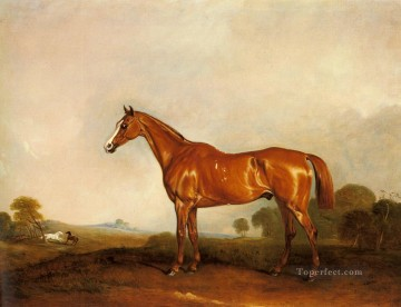 Ferneley Oil Painting - A Chestnut Hunter In A Landscape racehorse John Ferneley Snr