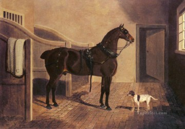 horses horse Painting - A Favorite Coach Horse And Dog In A Stable Herring Snr John Frederick horse
