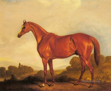 Ferneley Oil Painting - A Portrait Of The Racehorse Harkaway horse John Ferneley Snr