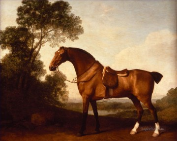 Animal Painting - A Saddled Bay Hunter by George Stubbs neddy