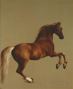 Whistlejacket by George Stubbs neddy Oil Paintings