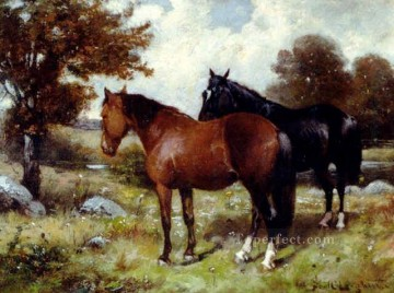 am084D animal horse Oil Paintings
