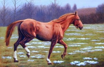 dw021fD animal horse Oil Paintings