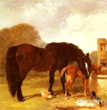 Horse Painting - Horse And foal Watering At A Trough Herring Snr John Frederick