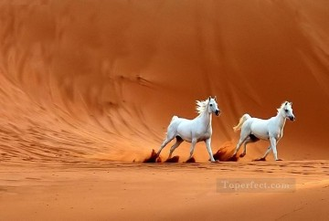 horse racing Painting - two white horses in desert