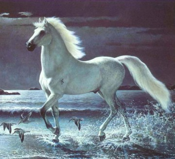 am258D11 animal horse Oil Paintings