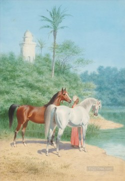 far0083D13 classic figure Arabian Arabic horses Oil Paintings
