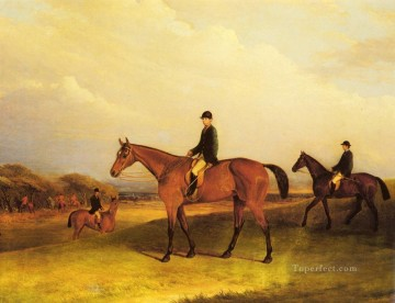 Ferneley Oil Painting - A Jockey On A Chestnut Hunter horse John Ferneley Snr