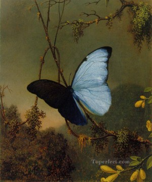 Animal Painting - Blue Morpho Butterfly ATC Romantic Martin Johnson Heade animal