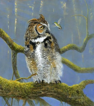 Fearless owl and bird animals Oil Paintings