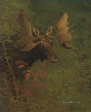 Animal Painting - STUDY OF A MOOSE American Albert Bierstadt animal