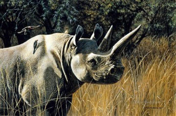 black rhino animals Oil Paintings