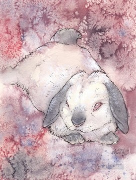 Rabbit Painting - The White Rabbit