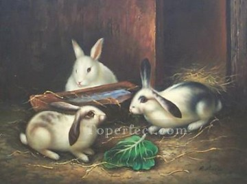 Rabbit Painting - am025D animal rabbits