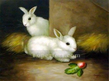 dw004hD animal rabbit Oil Paintings